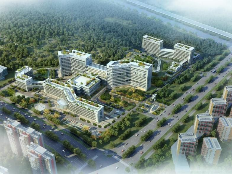 广州市南沙中心医院